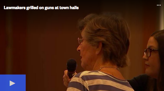 Lawmakers grilled on guns at town halls
